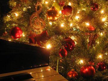 Hraní pod stromkem