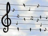 Zpívání s přáteli