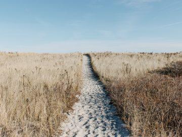 Cesta k druhým