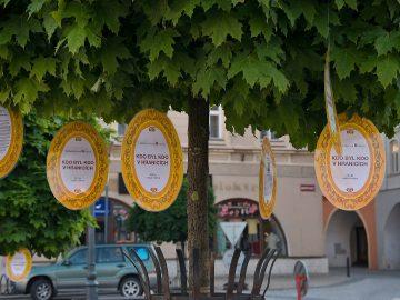 Knihovna v ulicích