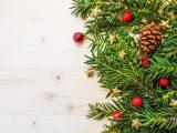 Rozsvícení vánočního stromu a malý jarmark