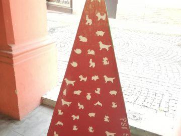 Výstava vánočních stromků / fotogalerie / IC VET Hranice + psí salón Dagmar Dlouhá + chovatelská stanice, foto: Ivana Žáková