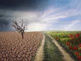 Změna klimatu a vliv na ekonomiku