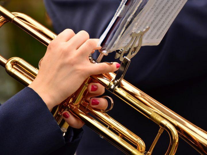 Koncert dechových orchestrů