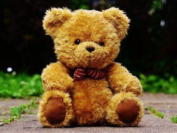 Vernisáž: Medvídci
