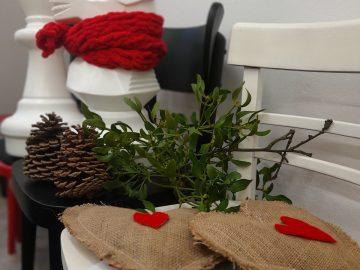 Rozsvícení vánočního stromu / fotogalerie / Vánoce v Hranicích, foto: archiv MKZ Hranice