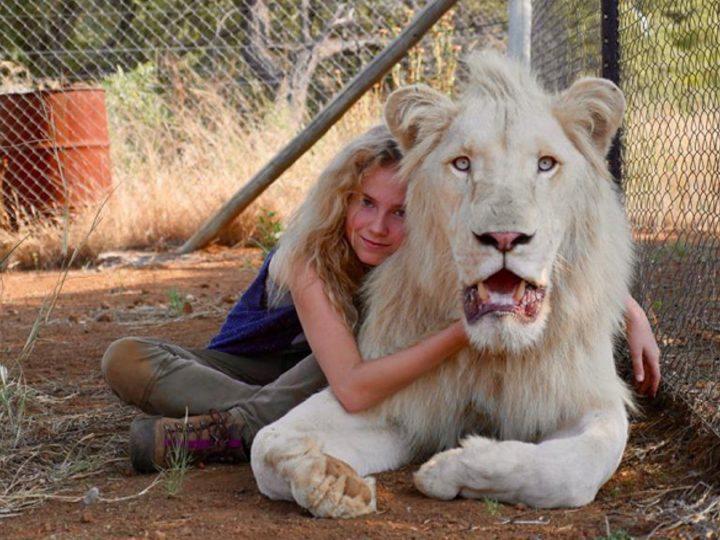 Mia a bílý lev: promítání s charitou